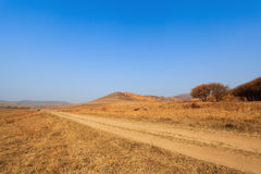 Dirt road in the autumn prairie Stock Images