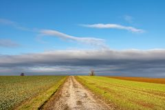 Dirt road between autumn or spring fields under blue sky stock photo