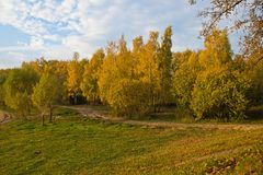 Dirt road in beautiful autumn park Royalty Free Stock Image