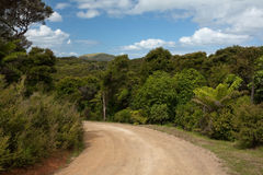 Dirt Road Bend Stock Images