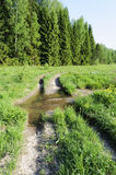 Dirt road with a big puddle Royalty Free Stock Photo