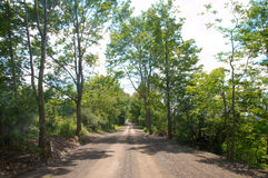 Dirt road and bright sky Royalty Free Stock Image