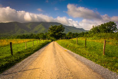 Dirt road at Cade's Cove in the morning Royalty Free Stock Images