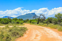 Dirt road in Camdeboo National, South Africa Stock Image