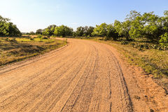Dirt Road in Cattle Country Stock Photo