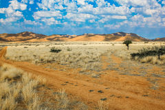 Desert sand road  Royalty Free Stock Photo