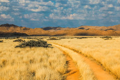 Desert road Namibia. Dirt Road in landscape desert at sunset. Solitaire, Namibia, Africa Stock Images