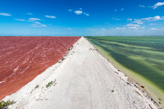Dirt Road and Colorful Water. Dirt road with red water on one side and green water on the other with a beautiful blue sky by the town of Las Coloradas near Rio Royalty Free Stock Image