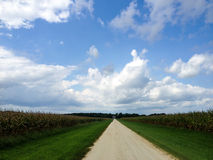 Dirt Road and the Corn Fields Royalty Free Stock Images