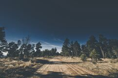 Dirt road in countryside Stock Images