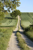 Dirt road in the Countryside of Bavaria Royalty Free Stock Image