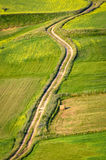 Dirt road in a countryside. With green fields Royalty Free Stock Photography
