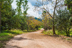 Dirt Road in countryside Royalty Free Stock Images