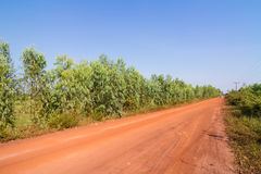 Dirt road in the countryside of Thailand Royalty Free Stock Photo