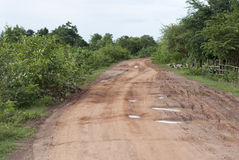 Dirt road in a countryside Stock Images