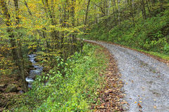 Dirt Road beside a Creek Royalty Free Stock Photos