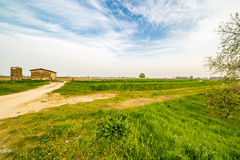 Dirt road crossing fields Royalty Free Stock Photo