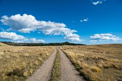 A dirt road curves through grassy fields and ranch land under a beautiful blue sky with white puffy clouds. Gravel road with dual tracks leading to perspective royalty free stock photography