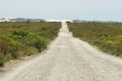 Dirt road in De hoop nature reserve Royalty Free Stock Image