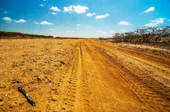 A Dirt Road in the Desert. A well used dirt road running though a desolate dry desert Stock Photo