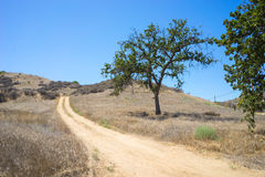 Dirt Road in Drought Wilderness. Dusty dirt road leads into the hot summer wilderness of southern California Stock Images