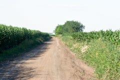 Dirt road Royalty Free Stock Photos