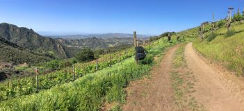 Panoramic view of the Southern California Wine Country stock photos