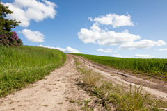 Dirt Road on a Farm Stock Image