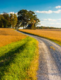 Dirt road through farm fields in rural York County, Pennsylvania Stock Image