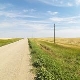 Dirt road through farmland Royalty Free Stock Photos