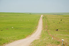 Dirt road and a fence splitting a wide open prairi Stock Photos