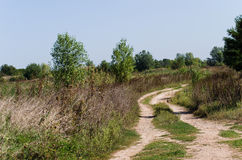 Dirt road. In a field Royalty Free Stock Photography