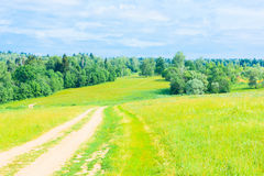 Dirt road in a field Stock Photography