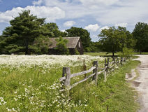 Dirt Road and Field to this Old House. An old house with a field of wildflowers,picket fence and a dirt road Royalty Free Stock Photography