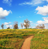 The dirt road through the fields Royalty Free Stock Images