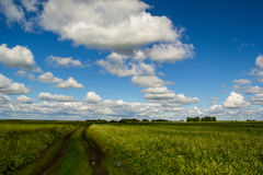 Dirt road. A dirt road through fields with green grass, clouds lined up in a row Stock Photo