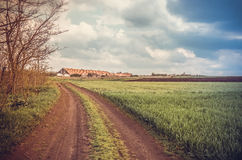 Dirt road in the fields Stock Photography