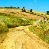 Dirt Road between Fields Royalty Free Stock Image