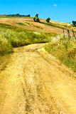 Dirt Road between Fields Royalty Free Stock Photography