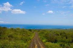 Dirt Road on Floreana Island. Galapagos royalty free stock photography