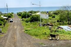 Dirt Road on Floreana Island. Galapagos royalty free stock image
