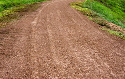 Dirt road and force of nature Royalty Free Stock Photos
