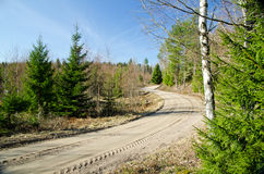 Dirt road in the forest. Dirt road with turns and tracks in a swedish forest Stock Images
