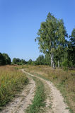Dirt road in forest glade Royalty Free Stock Images