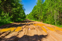 Dirt road in the forest Stock Photos