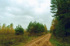 Dirt road gloomy autumn day Royalty Free Stock Photography