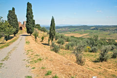 Dirt road going to abandoned farm, Tuscany Royalty Free Stock Image