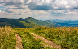 Dirt road through grassy meadow on the ridge Stock Images