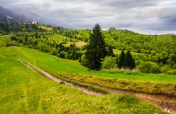 Dirt road through grassy slope in rural area. Beautiful countryside of Carpathian mountains on an overcast springtime day Stock Photography