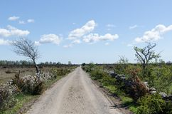 Dirt road into the great plain grassland Alvaret at the swedish island Oland. Dirt road into the great plain grassland and world heritage site Mockleby-Gardstorp royalty free stock photos